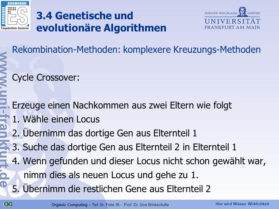 Organic Computing – Teil 3b, Folie 36 - Prof. Dr. Uwe Brinkschulte