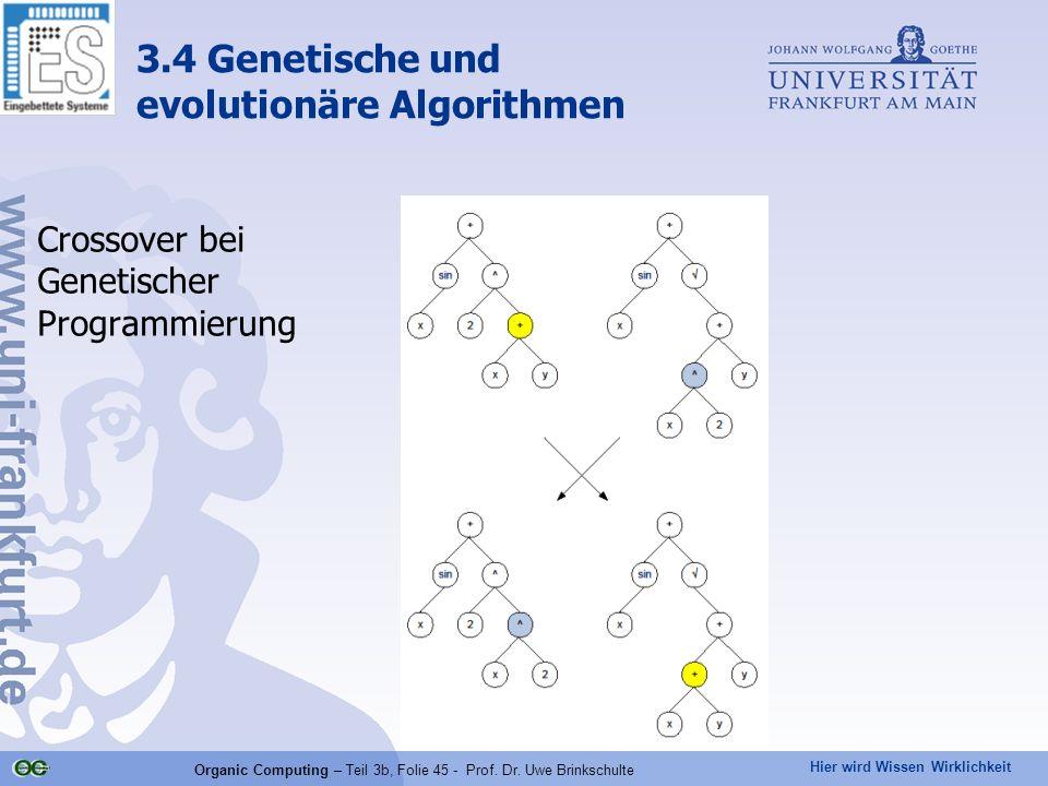 Crossover bei Genetischer Programmierung