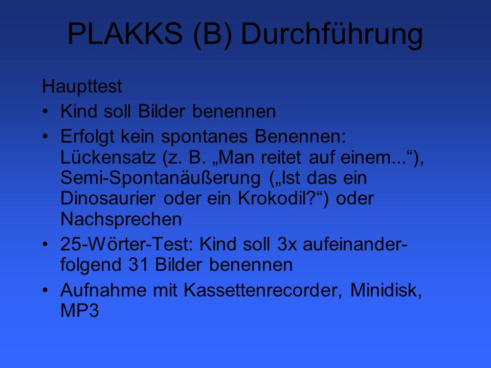 PLAKKS (B) Durchführung
