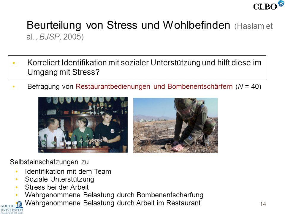 Beurteilung von Stress und Wohlbefinden (Haslam et al., BJSP, 2005)