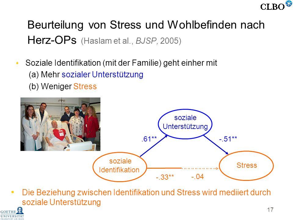 Beurteilung von Stress und Wohlbefinden nach Herz-OPs (Haslam et al