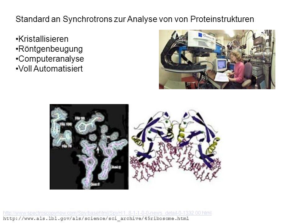 Standard an Synchrotrons zur Analyse von von Proteinstrukturen