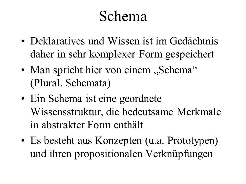 """Schema Deklaratives und Wissen ist im Gedächtnis daher in sehr komplexer Form gespeichert. Man spricht hier von einem """"Schema (Plural. Schemata)"""