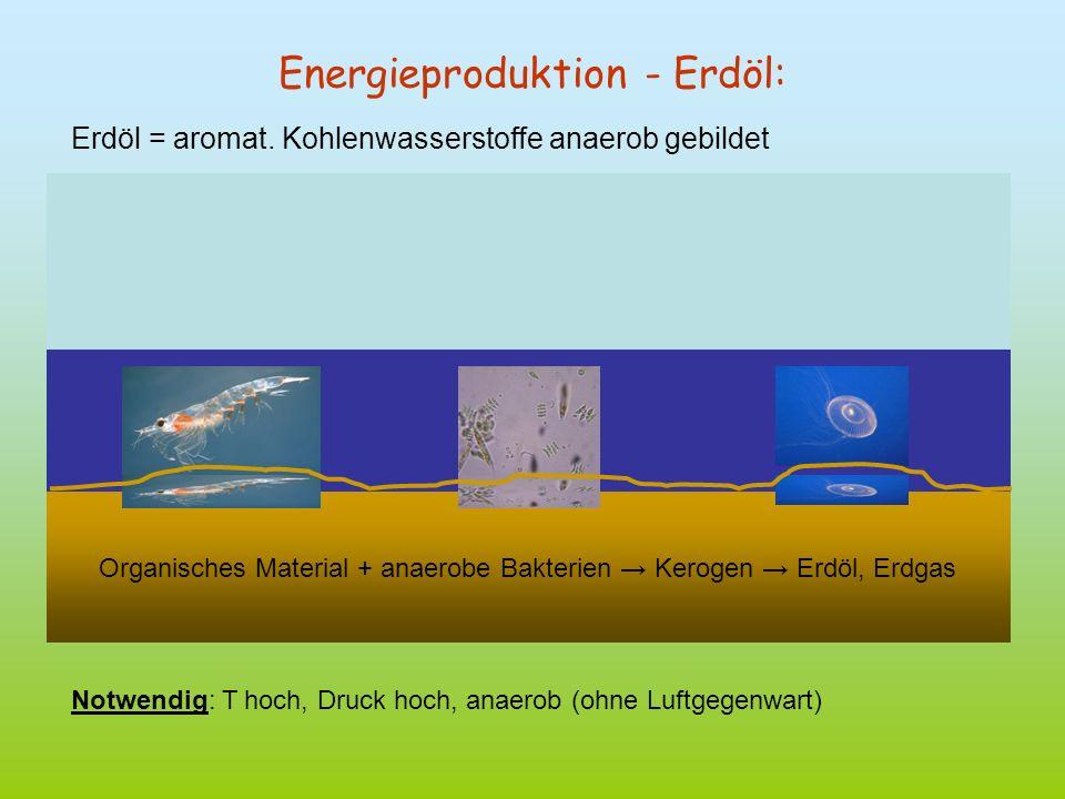 Energieproduktion - Erdöl:
