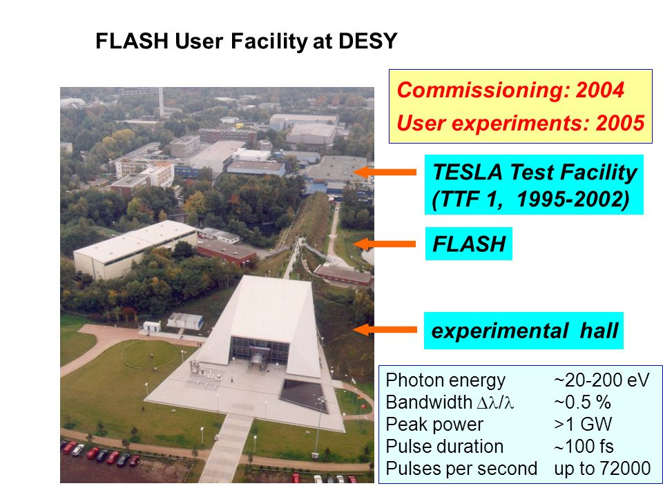 FLASH User Facility at DESY