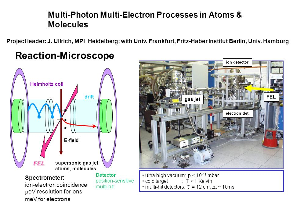 Multi-Photon Multi-Electron Processes in Atoms & Molecules