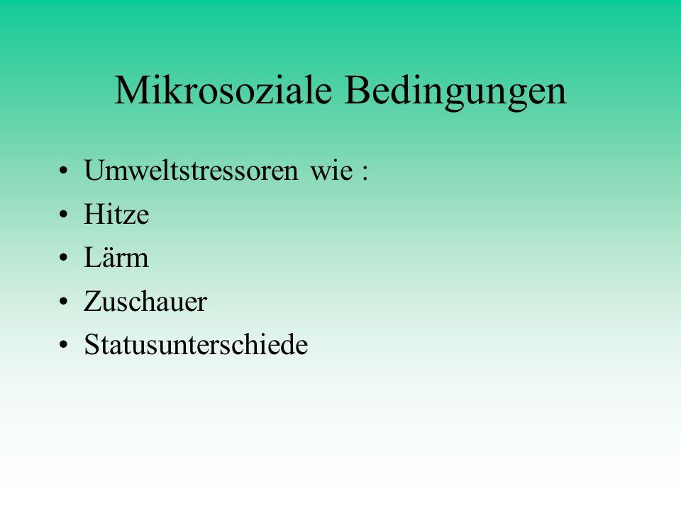 Mikrosoziale Bedingungen