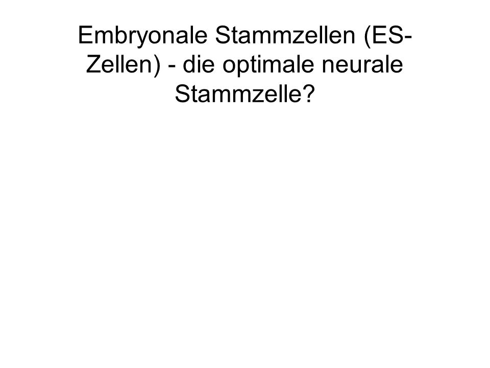 Embryonale Stammzellen (ES-Zellen) - die optimale neurale Stammzelle