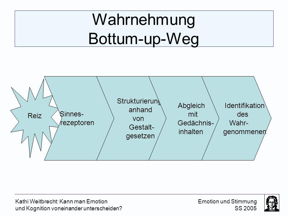 Wahrnehmung Bottum-up-Weg