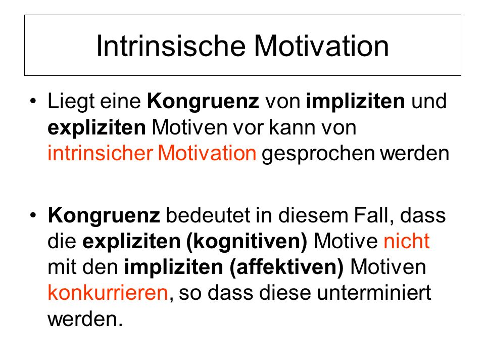 Intrinsische Motivation
