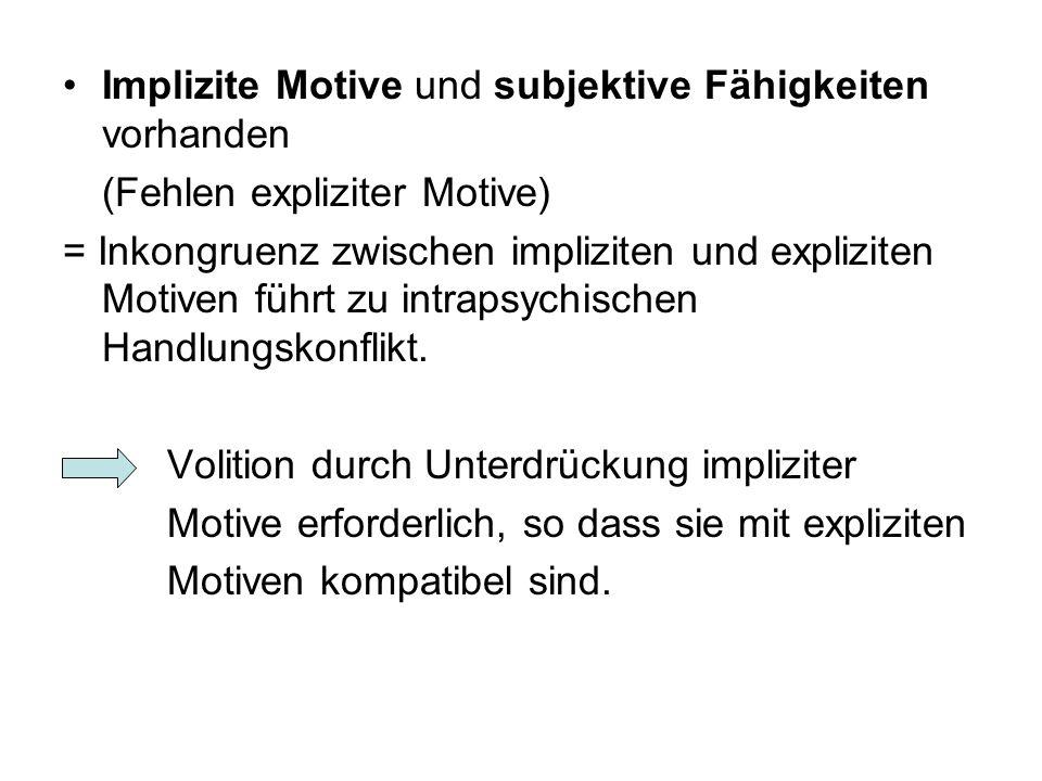 Implizite Motive und subjektive Fähigkeiten vorhanden