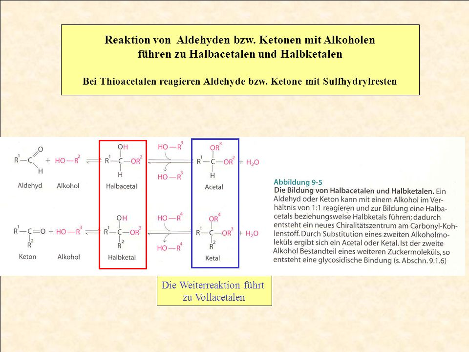 Reaktion von Aldehyden bzw. Ketonen mit Alkoholen