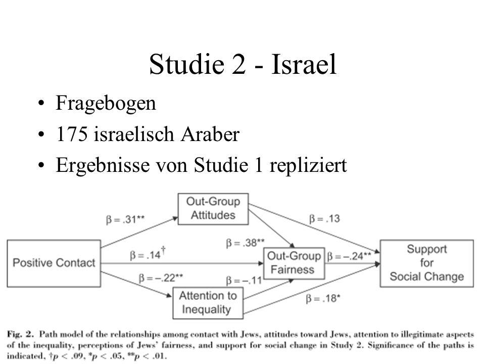 Studie 2 - Israel Fragebogen 175 israelisch Araber