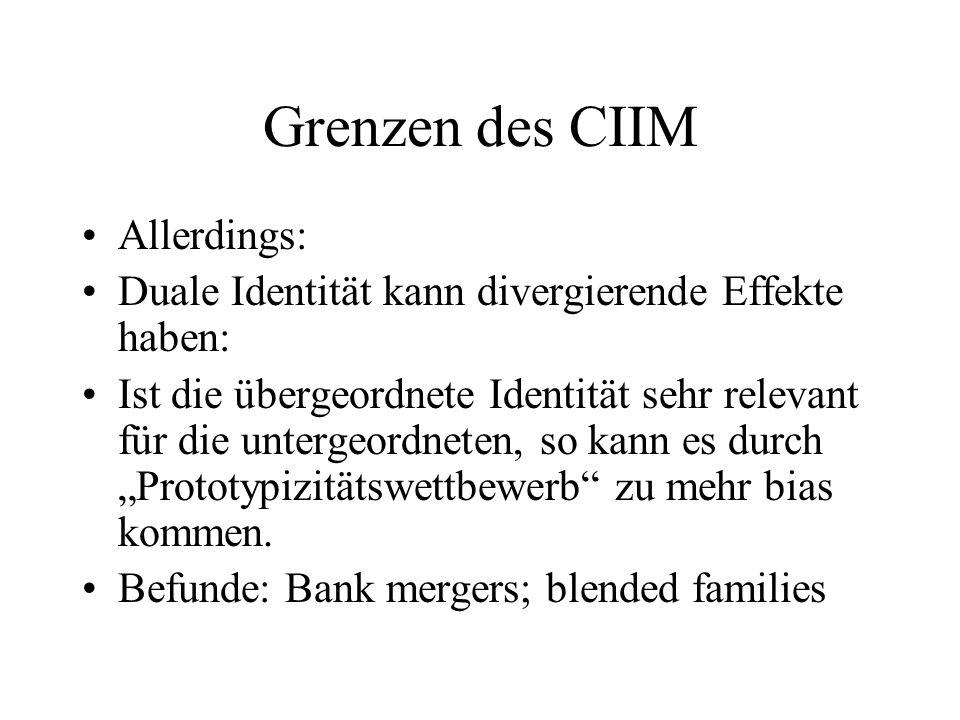 Grenzen des CIIM Allerdings:
