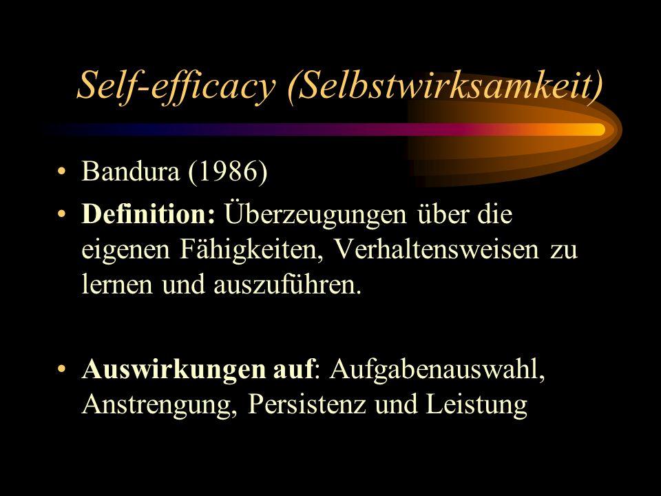 Self-efficacy (Selbstwirksamkeit)