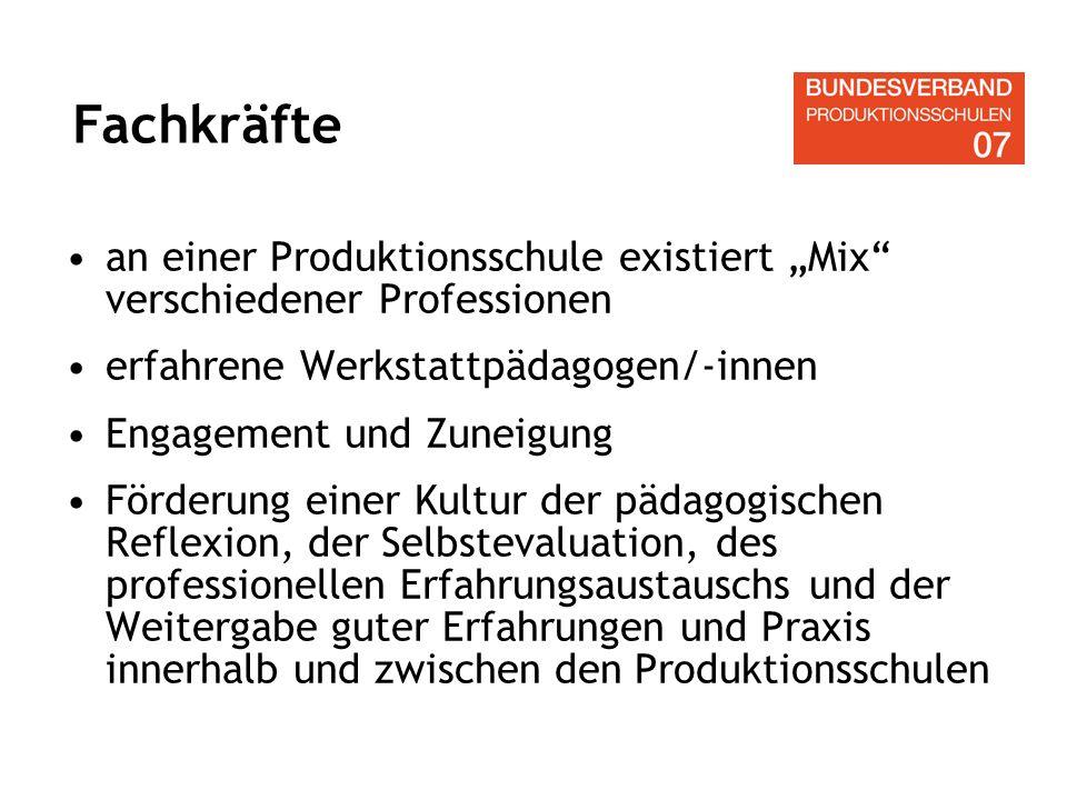 """Fachkräfte an einer Produktionsschule existiert """"Mix verschiedener Professionen. erfahrene Werkstattpädagogen/-innen."""