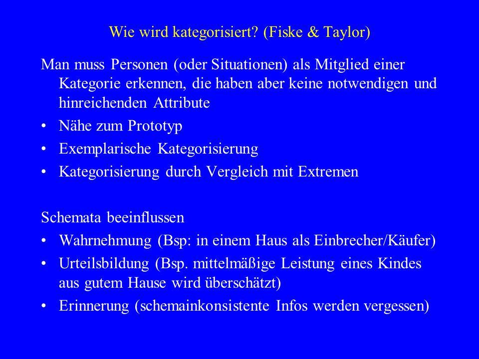 Wie wird kategorisiert (Fiske & Taylor)
