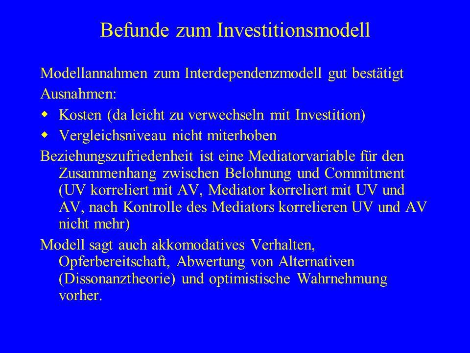 Befunde zum Investitionsmodell