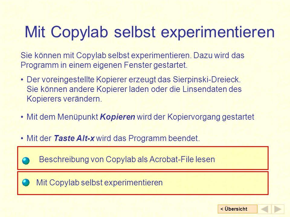 Mit Copylab selbst experimentieren