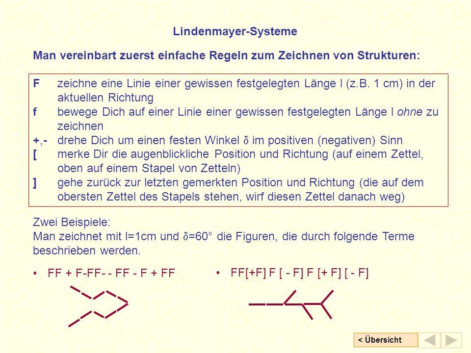 Lindenmayer-Systeme Man vereinbart zuerst einfache Regeln zum Zeichnen von Strukturen: