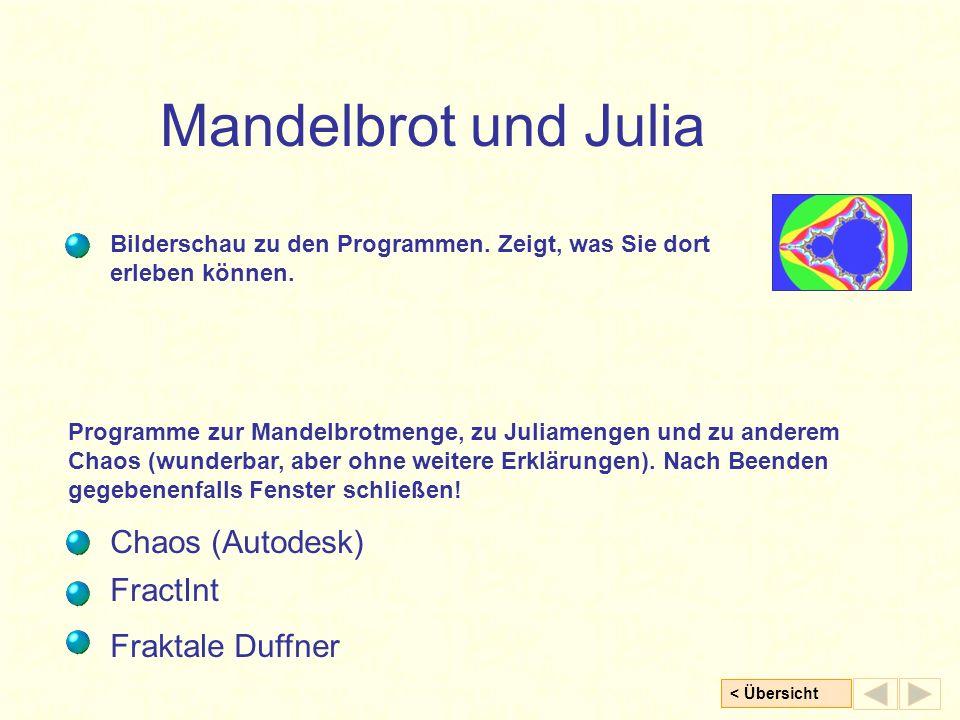Mandelbrot und Julia Chaos (Autodesk) FractInt Fraktale Duffner