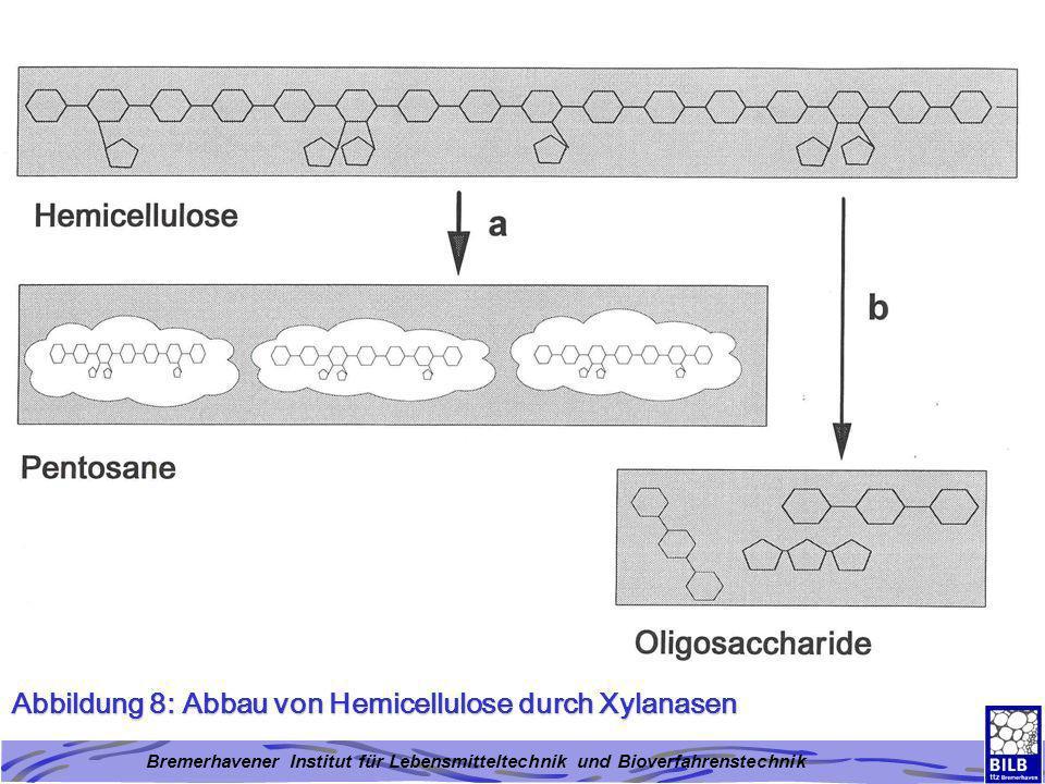 Abbildung 8: Abbau von Hemicellulose durch Xylanasen