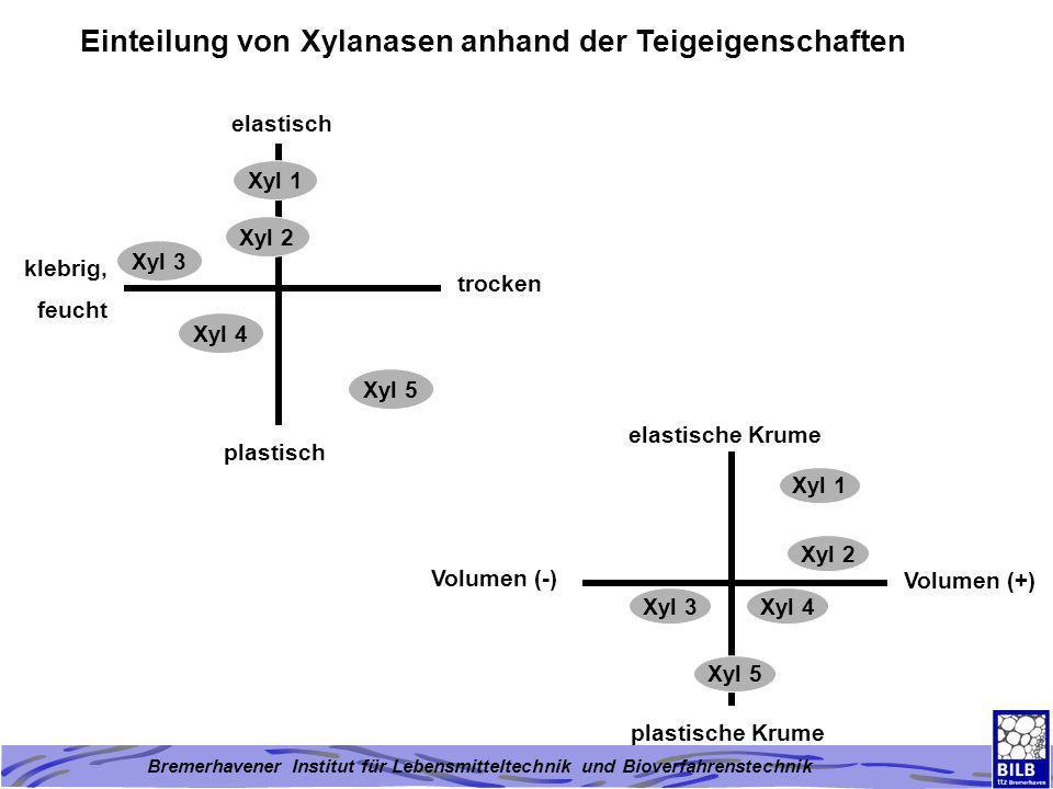 Einteilung von Xylanasen anhand der Teigeigenschaften