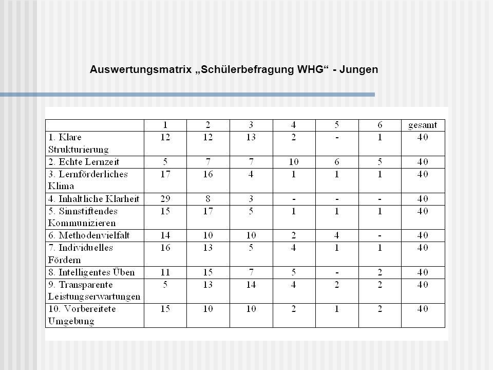 """Auswertungsmatrix """"Schülerbefragung WHG - Jungen"""