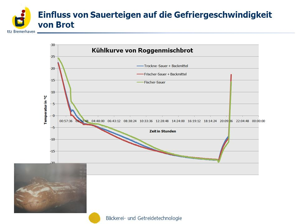 Einfluss von Sauerteigen auf die Gefriergeschwindigkeit von Brot