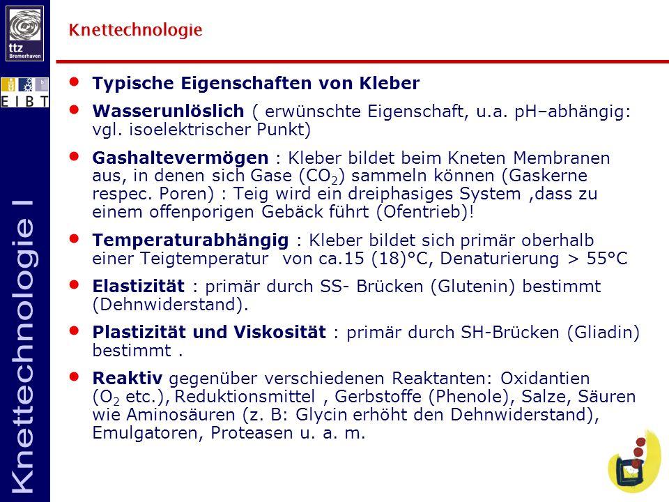 Knettechnologie Typische Eigenschaften von Kleber. Wasserunlöslich ( erwünschte Eigenschaft, u.a. pH–abhängig: vgl. isoelektrischer Punkt)