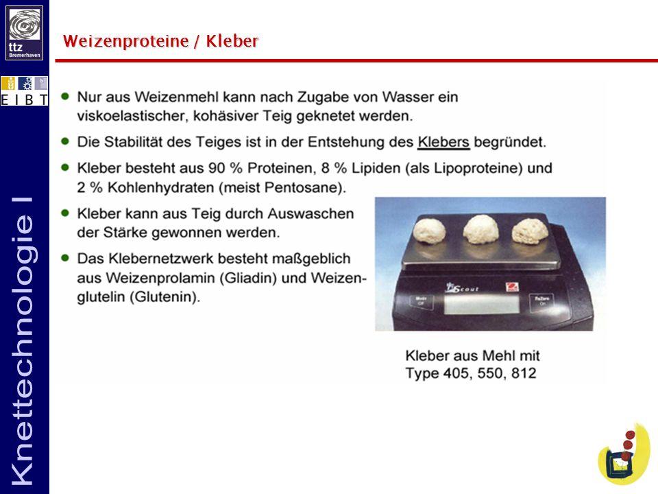 Weizenproteine / Kleber