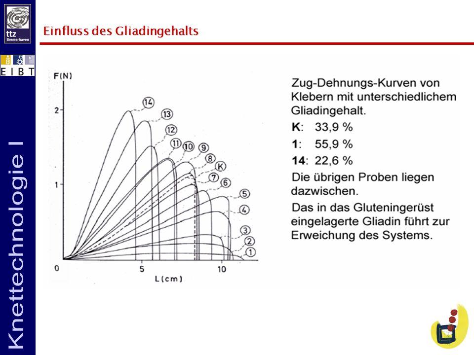 Einfluss des Gliadingehalts