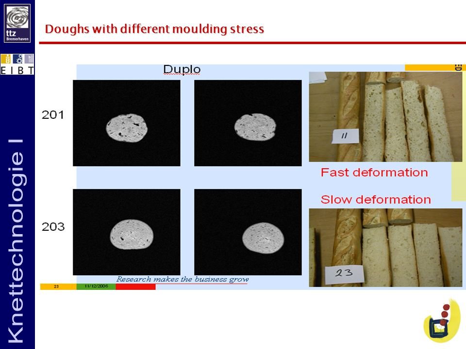 Doughs with different moulding stress