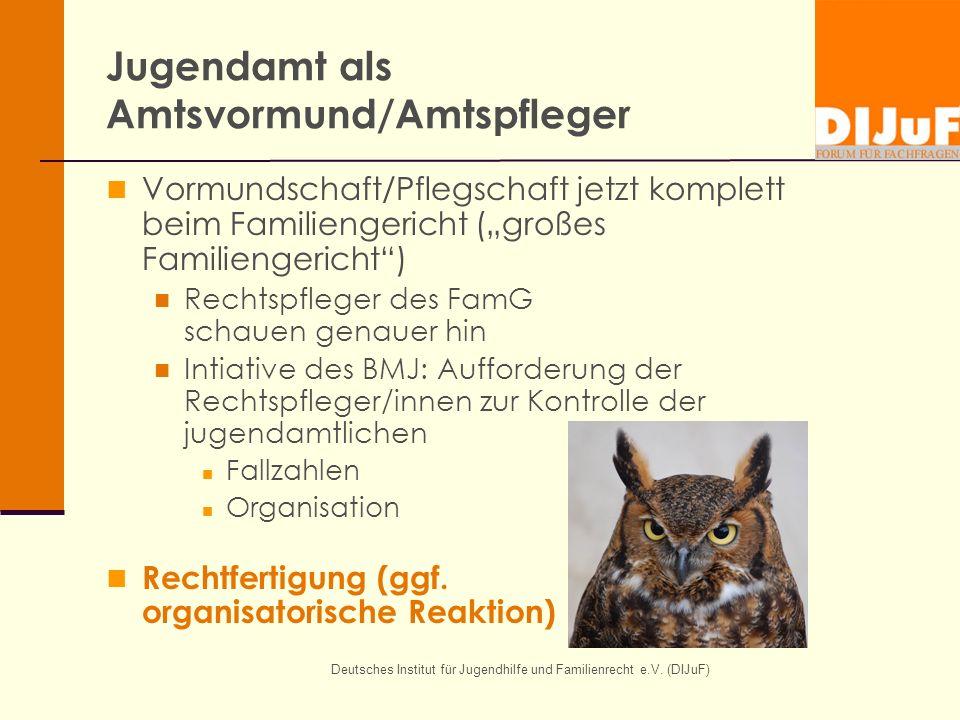 Jugendamt als Amtsvormund/Amtspfleger