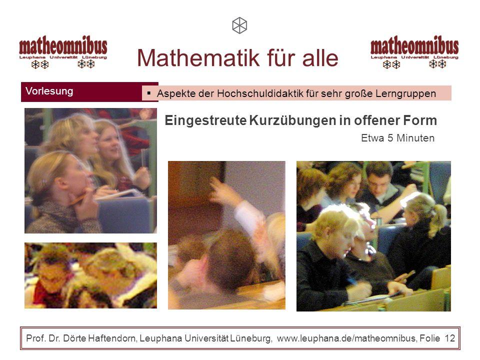 Mathematik für alle Eingestreute Kurzübungen in offener Form Vorlesung