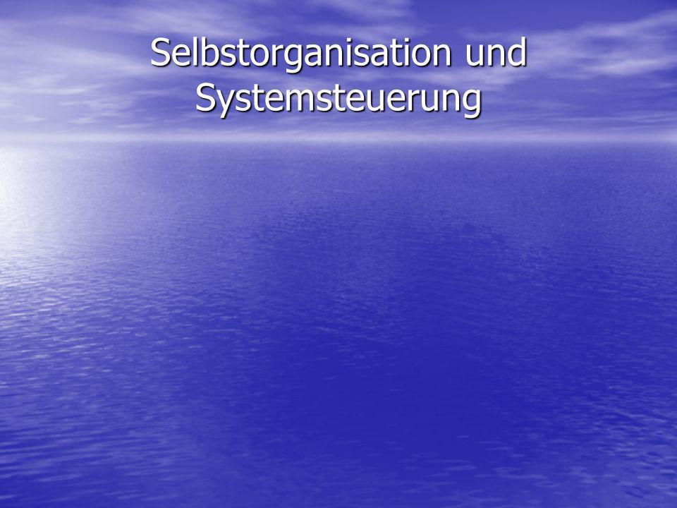 Selbstorganisation und Systemsteuerung