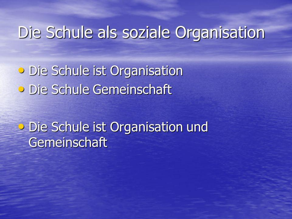 Die Schule als soziale Organisation