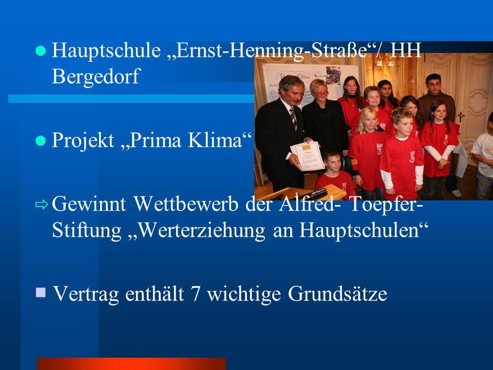 """Hauptschule """"Ernst-Henning-Straße / HH Bergedorf"""