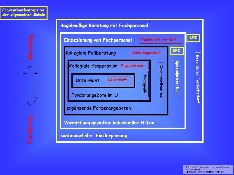 Kollegiale Kooperation ergänzende Förderangeboten