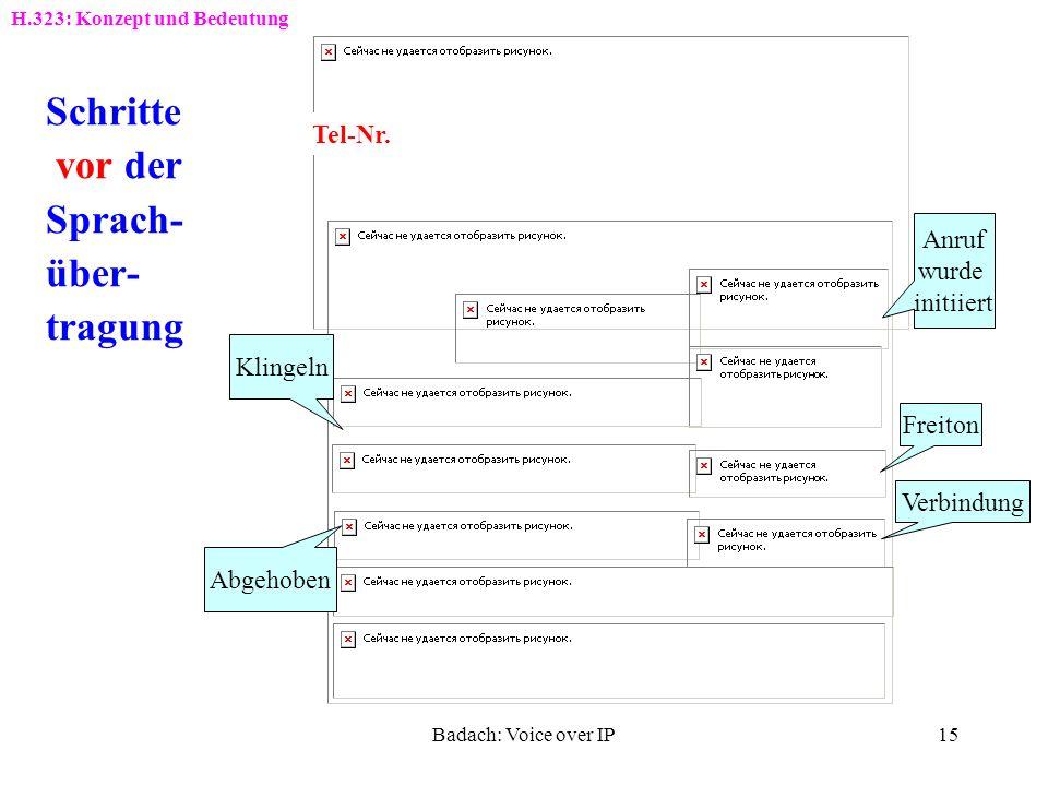 Schritte vor der Sprach- über- tragung