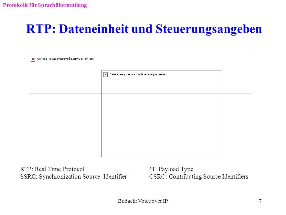 RTP: Dateneinheit und Steuerungsangeben