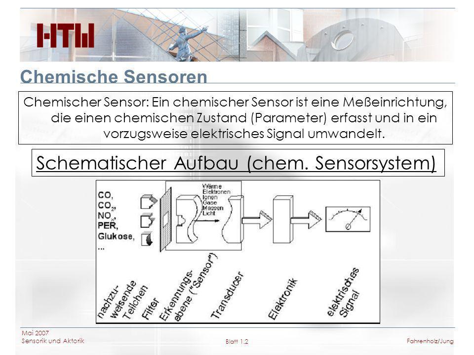 Schematischer Aufbau (chem. Sensorsystem)