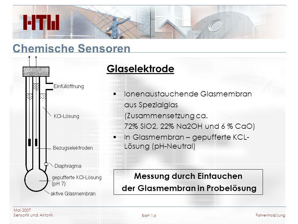 Messung durch Eintauchen der Glasmembran in Probelösung