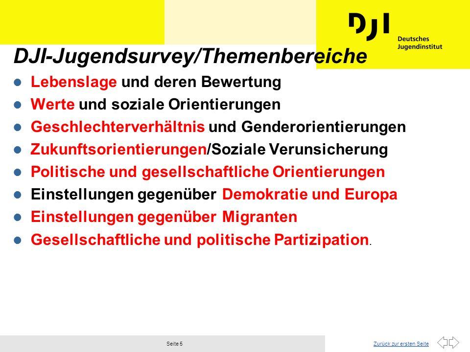 DJI-Jugendsurvey/Themenbereiche