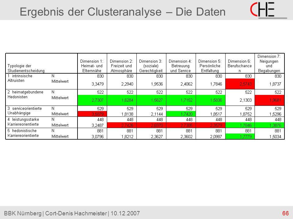 Ergebnis der Clusteranalyse – Die Daten