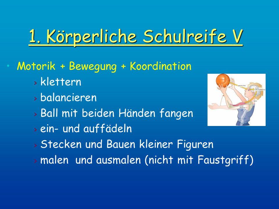 1. Körperliche Schulreife V