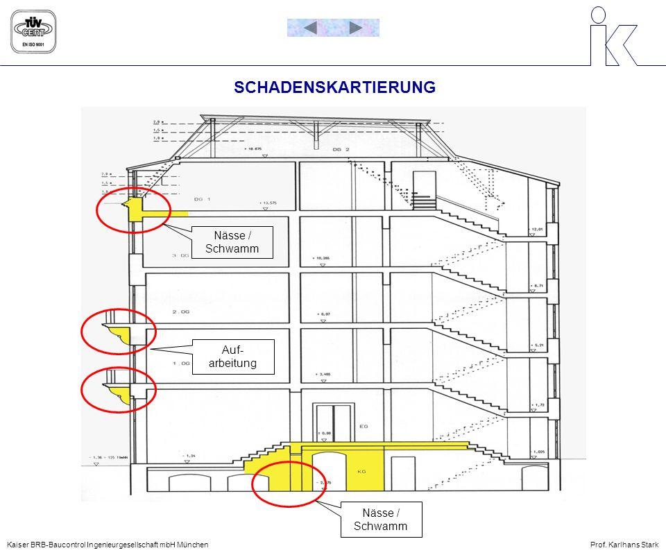 SCHADENSKARTIERUNG Nässe / Schwamm Auf- arbeitung Nässe / Schwamm