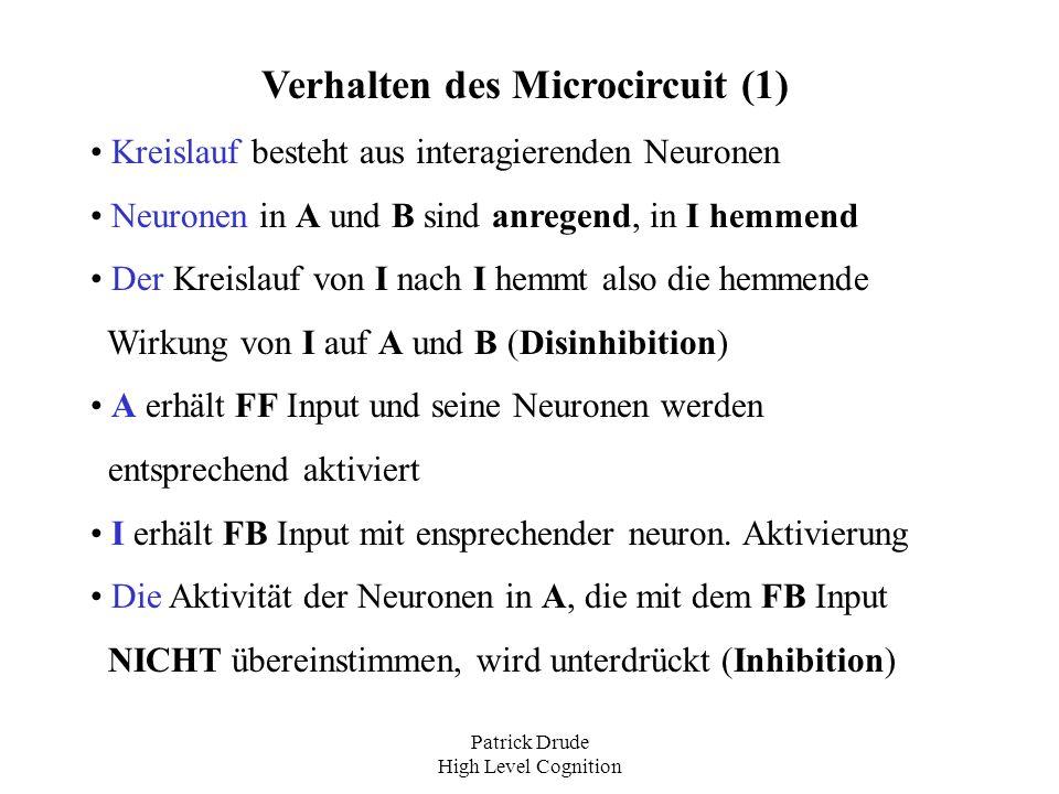 Verhalten des Microcircuit (1)