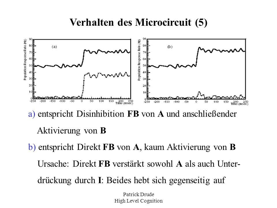 Verhalten des Microcircuit (5)