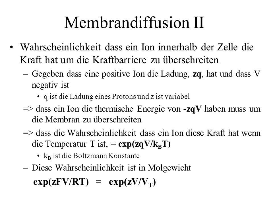 Membrandiffusion II Wahrscheinlichkeit dass ein Ion innerhalb der Zelle die Kraft hat um die Kraftbarriere zu überschreiten.